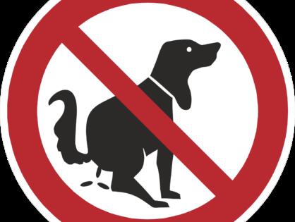 Escrementi di animali domestici in condominio
